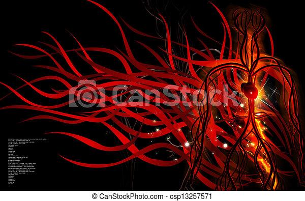 系統, 血管 - csp13257571