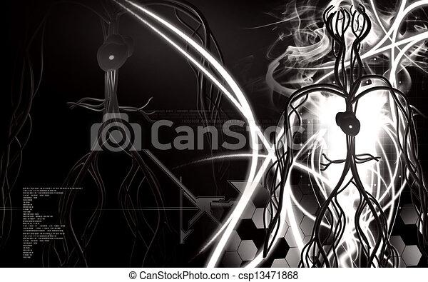 系統, 血管 - csp13471868