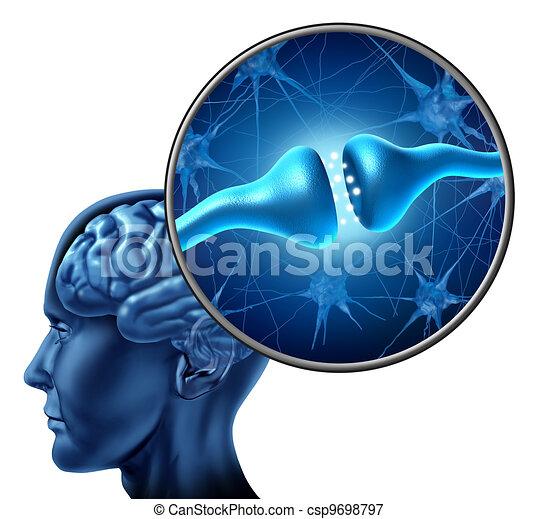 細胞, 受容器, 神経, 人間, シナプス - csp9698797