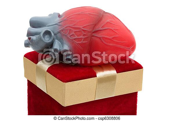 給, 生活, 禮物 - csp6308806