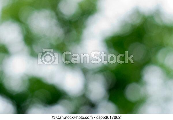 綠色的背景 - csp53617862