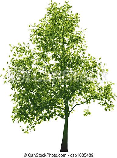 緑, ベクトル, 木 - csp1685489