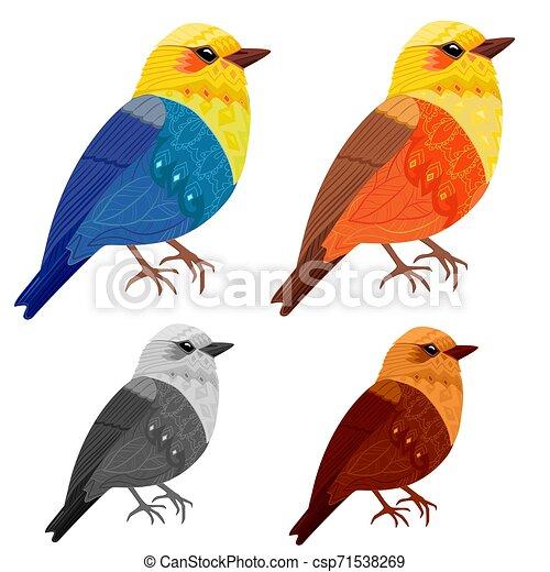 美しい, デザイン, 鳥, コレクション, あなたの - csp71538269