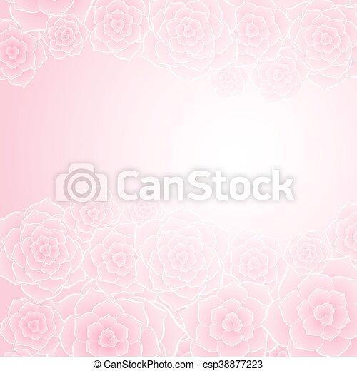 美しい, ピンクの花, 背景, バラ - csp38877223