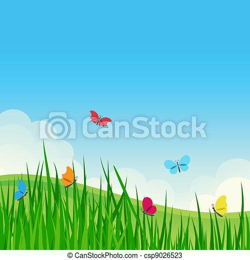 美しい, 夏, meadow. - csp9026523