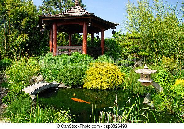 美しい, 日本の庭 - csp8826493
