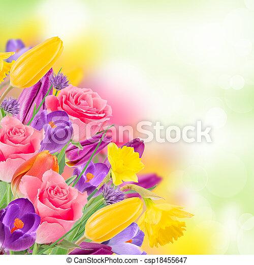 美しい, 花束, flowers. - csp18455647