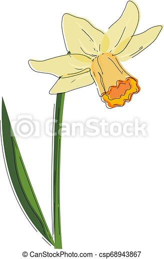 美しい, 花, 色, イラスト, ベクトル, スイセン, ∥あるいは∥ - csp68943867