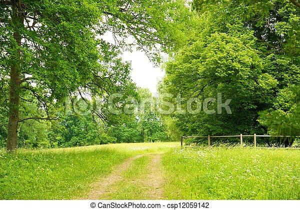 美しい, 風景 - csp12059142