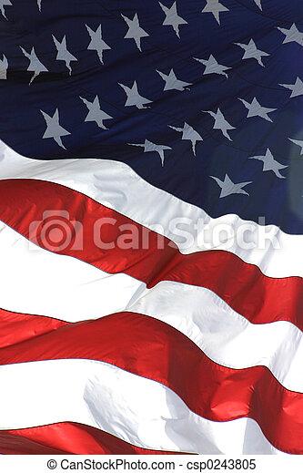 美國旗, 垂直, 看法 - csp0243805