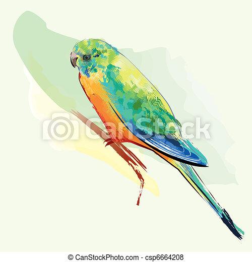 羽 インコ カラフルである 鳥 カラフルである モデル Editable 羽