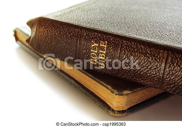 聖書 - csp1995363
