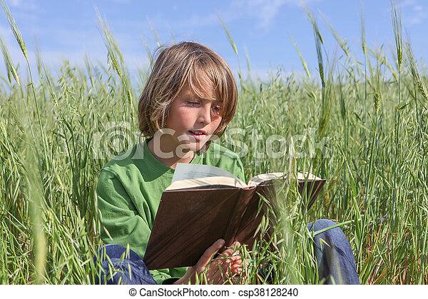 聖書, 本, 子供, outdoors., 読書, ∥あるいは∥ - csp38128240