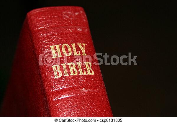 聖經 - csp0131805
