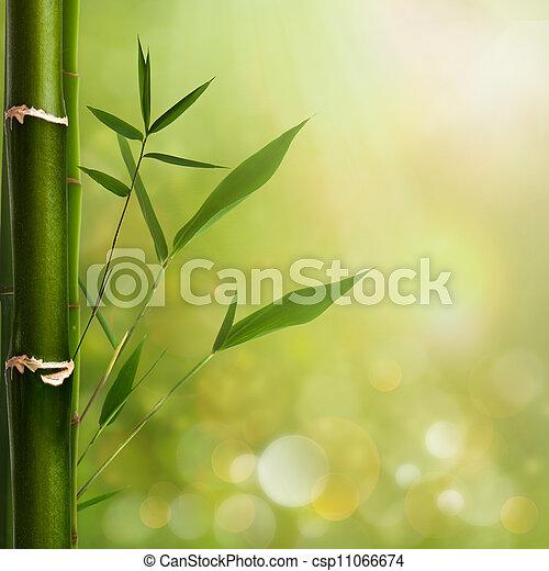 背景, 葉, 自然, 竹, 禅 - csp11066674