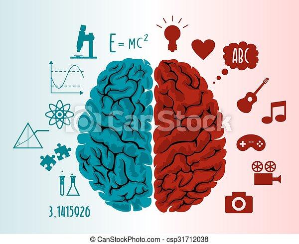 脳, イラスト, infographics - csp31712038