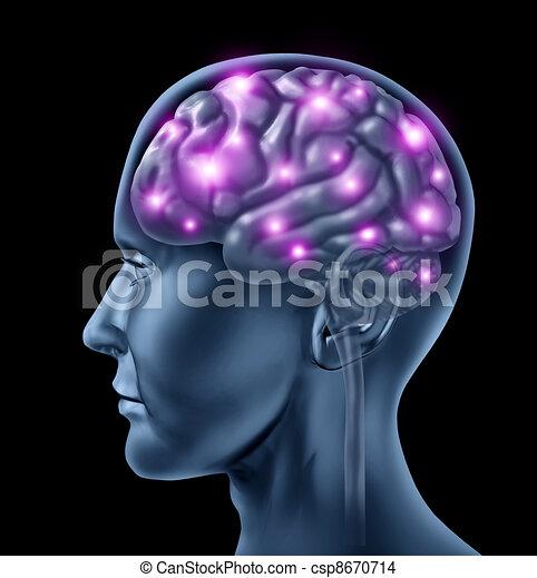 脳, 人間, 知性 - csp8670714
