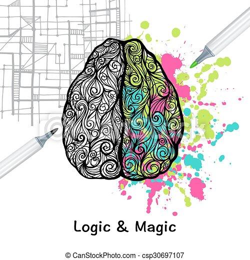 脳, 権利, 左 - csp30697107