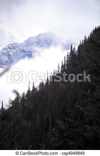 自然, 光景 - csp4949849