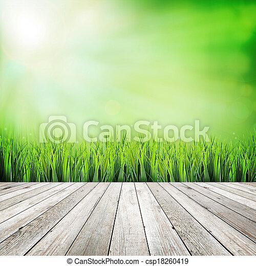自然, 抽象的, 木, 緑の背景, 板 - csp18260419