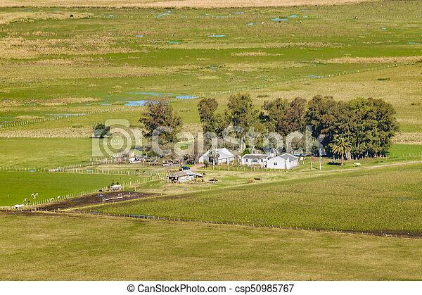 航空写真, ウルグアイ, 田舎, maldonado, 現場, 光景 - csp50985767