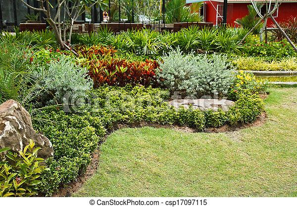 花园 - csp17097115