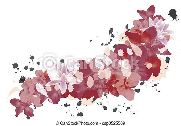 花弁, 背景, 赤 - csp0525589