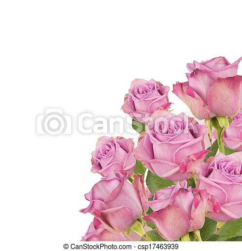 花束, ばら - csp17463939