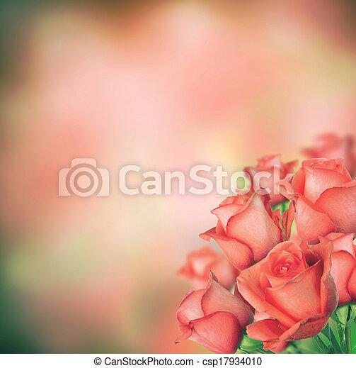 花束, ばら - csp17934010
