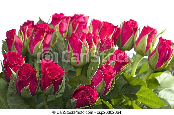 花束, ばら, 赤 - csp26882864