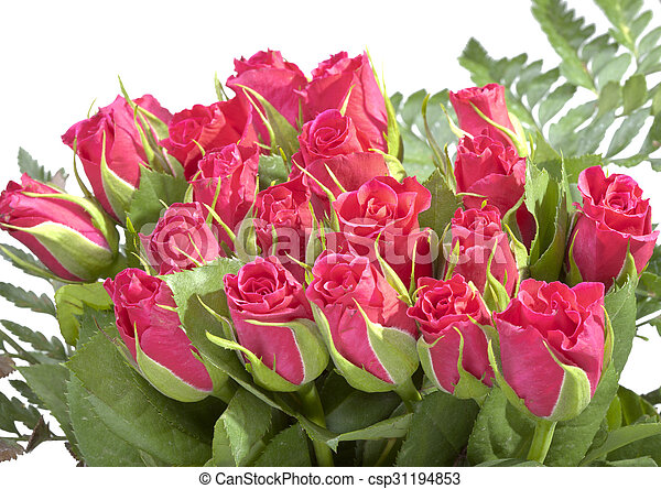 花束, ばら, 赤 - csp31194853