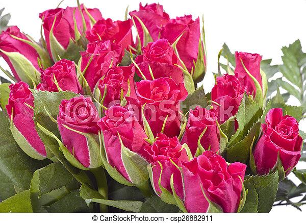 花束, ばら, 赤 - csp26882911