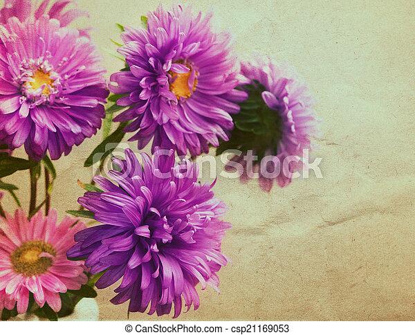 花束, スタイル, 花, アスター, レトロ - csp21169053
