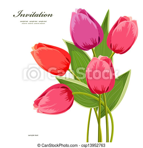 花束, チューリップ, デザイン, 隔離された, あなたの - csp13952763