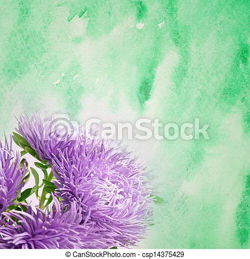 花, アスター - csp14375429