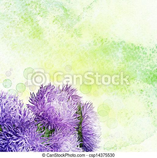 花, アスター - csp14375530