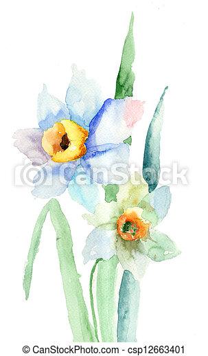 花, スイセン - csp12663401