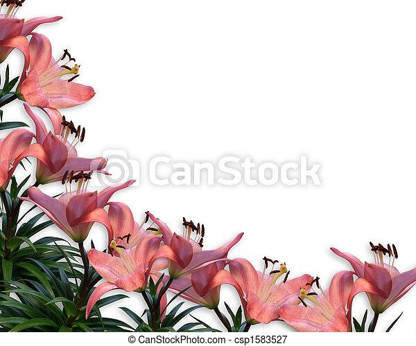 花, ピンク, ユリ, ボーダー, 招待 - csp1583527