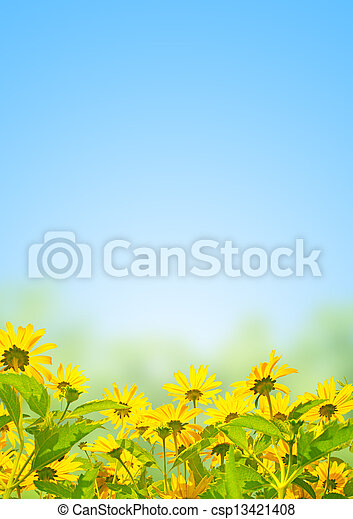 花, 春 - csp13421408