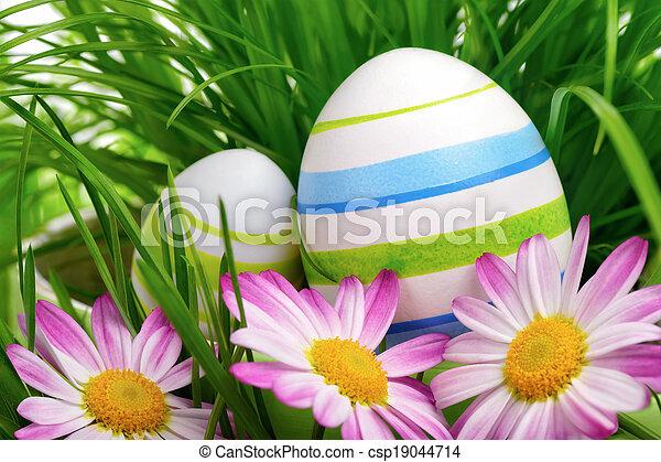 花, 更東的草, 蛋 - csp19044714
