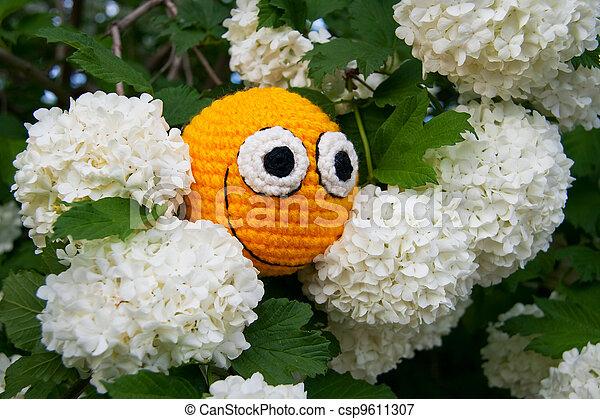 花, 黄色, smiley - csp9611307