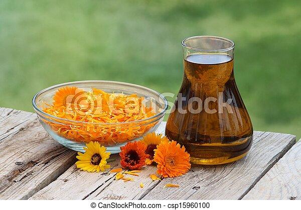 花, calendula, オイル - csp15960100