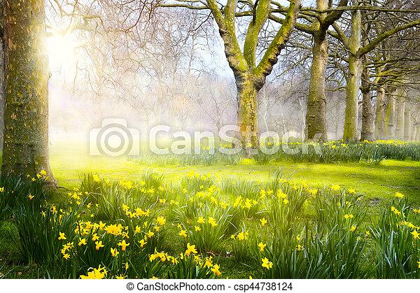 芸術, park;, 春の花, イースター, 風景 - csp44738124