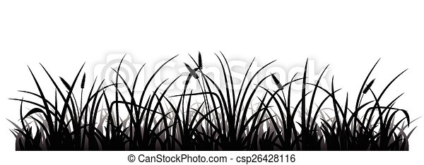 草, シルエット - csp26428116
