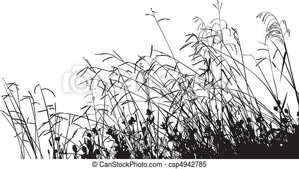 草, シルエット, 牧草地 - csp4942785