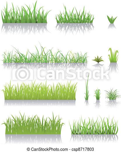 草, 緑, セット - csp8717803