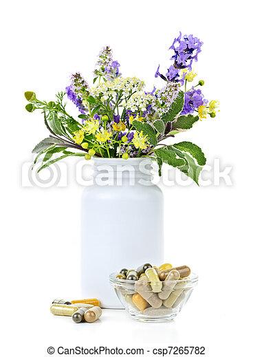 草 薬, 植物 - csp7265782