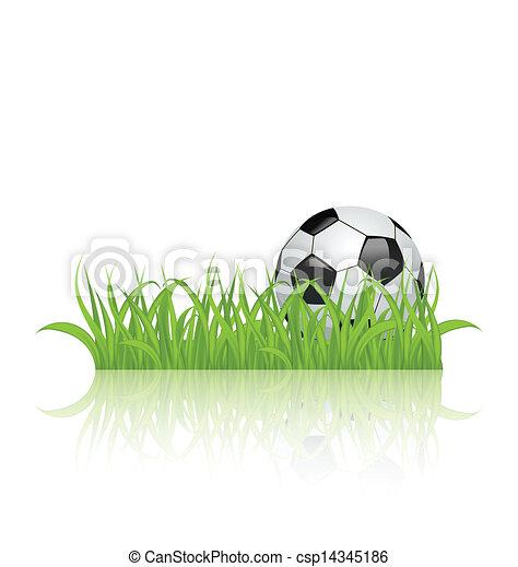 草, 隔離された, ボール, 背景, 白, サッカー - csp14345186