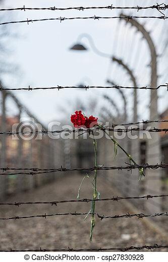 营房, 电, 栅栏, 波兰, auschwitz, 我, 集中, 纳粹, 以前 - csp27830928