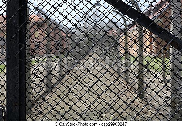 营房, 电, 栅栏, 波兰, auschwitz, 我, 集中, 纳粹, 以前 - csp29903247